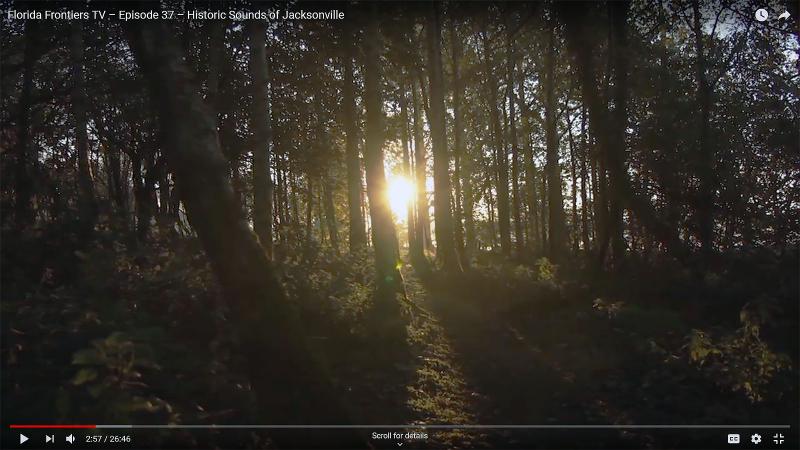 Forrest sounds