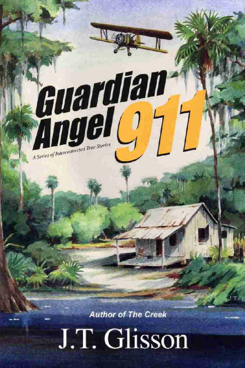 COVER: Guardian Angel 911: A series of Interconnected True Stories